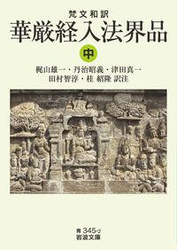 梵文和訳 華厳経入法界品 (中) 岩波文庫