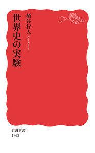 世界史の実験 (岩波新書 新赤版 1762)