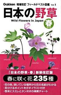 日本の野草 春 増補改訂