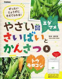 5 エダマメ・トウモロコシ
