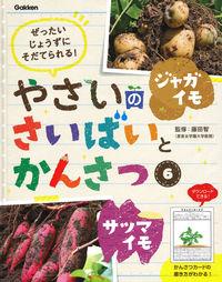 6 ジャガイモ・サツマイモ