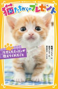 猫たちからのプレゼント / ケガしたミィミィが教えてくれたこと