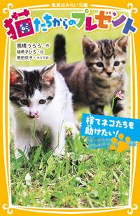 猫たちからのプレゼント 捨てネコたちを助けたい!