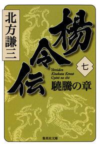 楊令伝 7(驍騰の章)