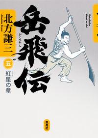 岳飛伝 5(紅星の章)