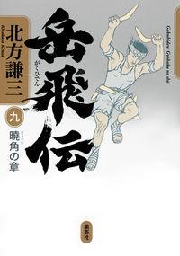 岳飛伝 9(曉角の章)