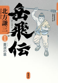 岳飛伝 13(蒼波の章)