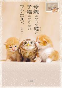 母親になった猫と子猫になりたいフクロウ。 / フクとマリモの子育て日記