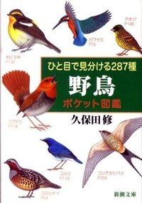 ひと目で見分ける287種野鳥ポケット図鑑