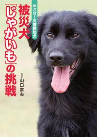 被災犬「じゃがいも」の挑戦 / めざせ!災害救助犬