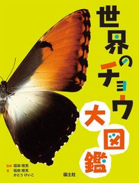 世界のチョウ大図鑑