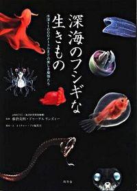 深海のフシギな生きもの : 水深11000メートルまでの美しき魔物たち