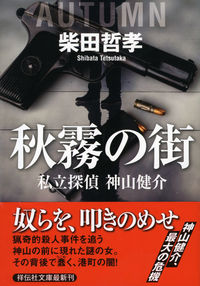 秋霧の街 / 私立探偵神山健介
