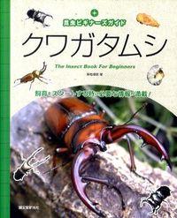 クワガタムシ : 昆虫ビギナーズガイド
