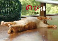 のび猫 / 猫飼いしか知らない猫のばしのコツ。