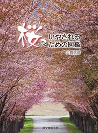 桜でいやされるための図鑑