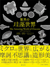 驚異の珪藻世界 The Amazing World of Diatoms