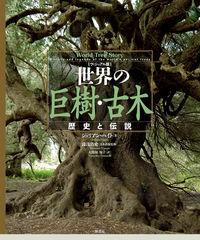 世界の巨樹・古木 / 歴史と伝説