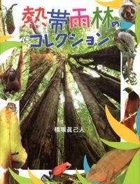 熱帯雨林のコレクション