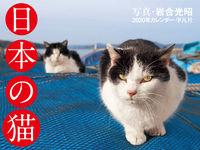 2020年カレンダー 日本の猫の表紙画像