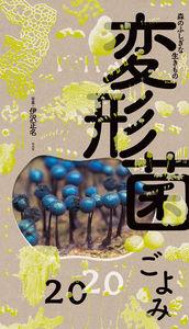 森の不思議な生きもの 変形菌ごよみの表紙画像