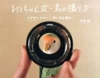 おとちゃん式・鳥の撮り方 / とびきりかわいく飼い鳥を撮る!