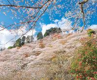 日本の美しい里と花の絶景