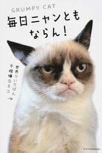 毎日ニャンともならん! / 世界でいちばん不機嫌なネコ