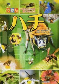 ずかんハチ / 見ながら学習調べてなっとく