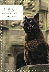 しろねこ / 英国の古城に暮らす猫を訪ねて