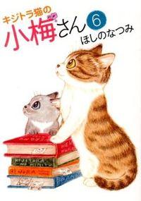 キジトラ猫の小梅さん 6