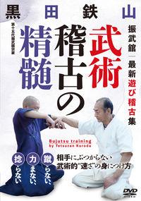 DVD 武術稽古の精髄