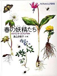 春の妖精たち / スプリング・エフェメラル