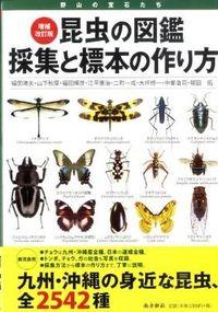 昆虫の図鑑採集と標本の作り方 増補改訂版 / 野山の宝石たち