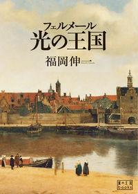 フェルメール光の王国 翼の王国books
