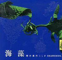 海藻 / 海の森のふしぎ
