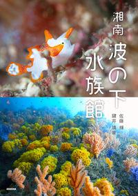 湘南 波の下水族館