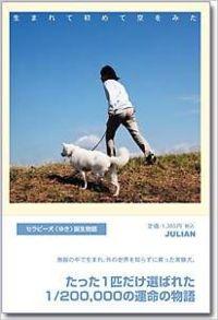 生まれて初めて空をみた / セラピー犬〈ゆき〉誕生物語