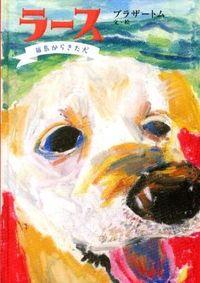 ラース / 福島からきた犬
